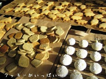 Christmas Cookie 001-b.JPG