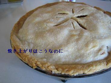 Pecan & Apple Pie 003-b.JPG