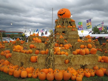 Pumpkin Patch 004.jpg